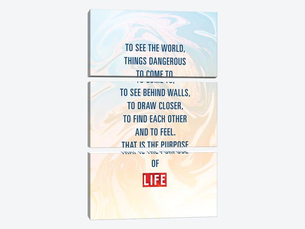The Purpose Of Life by Nikita Abakumov 3-piece Canvas Print