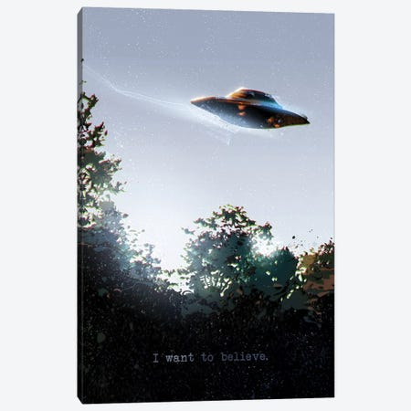 I Want To Believe Canvas Print #AKM29} by Nikita Abakumov Canvas Art Print