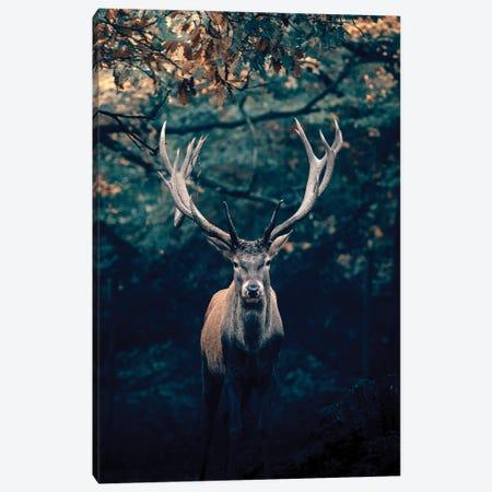 Deer Canvas Print #AKM303} by Nikita Abakumov Canvas Art Print