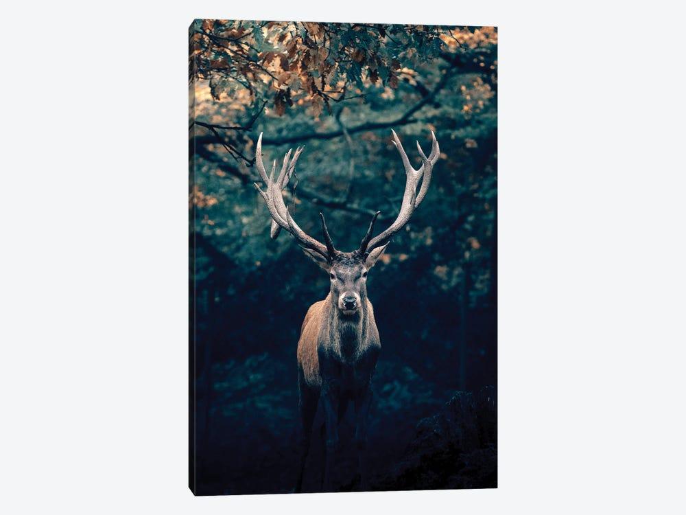 Deer by Nikita Abakumov 1-piece Canvas Artwork