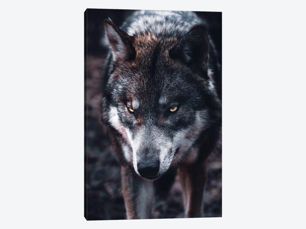 Wolf Hunts by Nikita Abakumov 1-piece Art Print