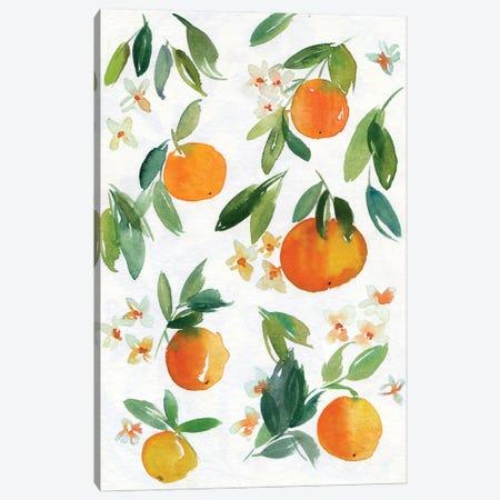 Mandarins Canvas Print #AKS128} by Andrea Kosar Canvas Art Print