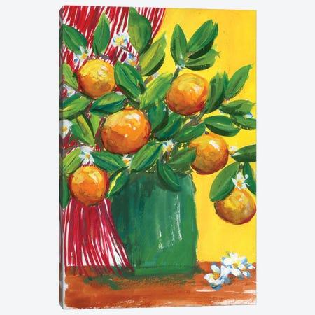 Oranges In Yellow Room: Stillife Canvas Print #AKS140} by Andrea Kosar Canvas Art Print