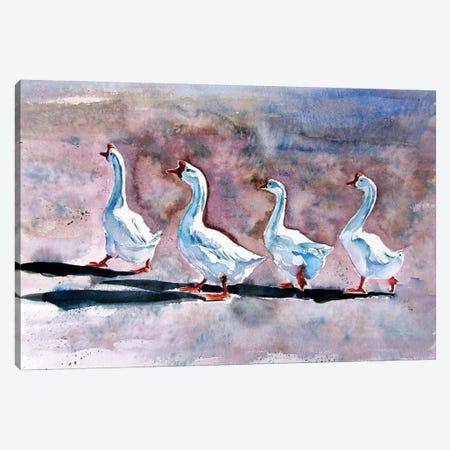 Walking Geese Canvas Print #AKV101} by Anna Brigitta Kovacs Canvas Art Print