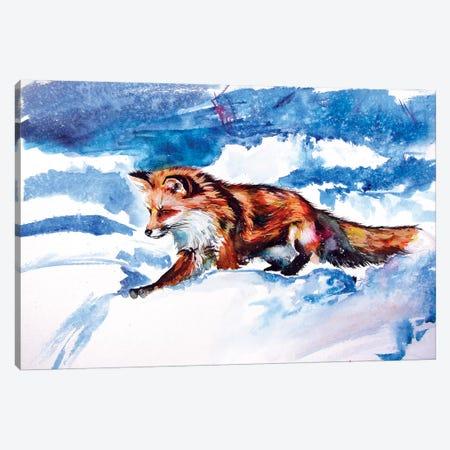 Red Fox In Snow Canvas Print #AKV104} by Anna Brigitta Kovacs Canvas Art