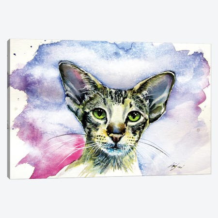 Cute Cat/Siamese Oriental Cat Canvas Print #AKV109} by Anna Brigitta Kovacs Art Print