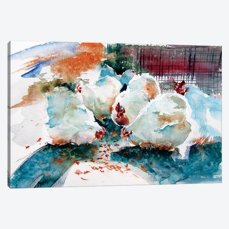 Hens And Rooster Canvas Print #AKV111} by Anna Brigitta Kovacs Canvas Artwork