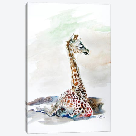 Sitting Giraffe Canvas Print #AKV112} by Anna Brigitta Kovacs Canvas Artwork