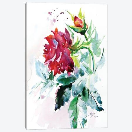 Rose Canvas Print #AKV115} by Anna Brigitta Kovacs Canvas Art Print