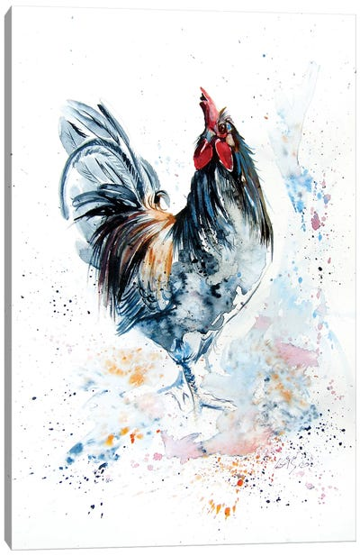 Young Rooster Canvas Art Print