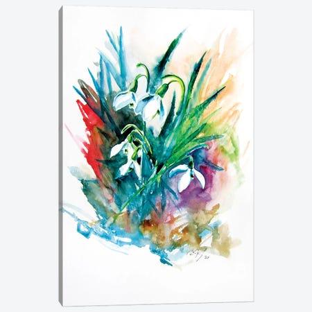 Snowdrops Canvas Print #AKV123} by Anna Brigitta Kovacs Art Print