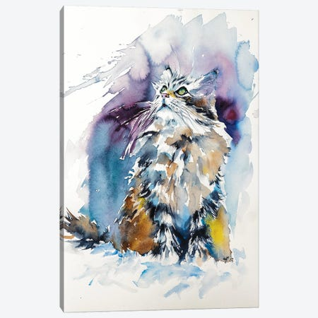 Cat On The Snow Canvas Print #AKV12} by Anna Brigitta Kovacs Art Print