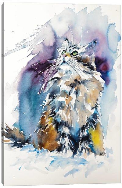 Cat On The Snow Canvas Art Print