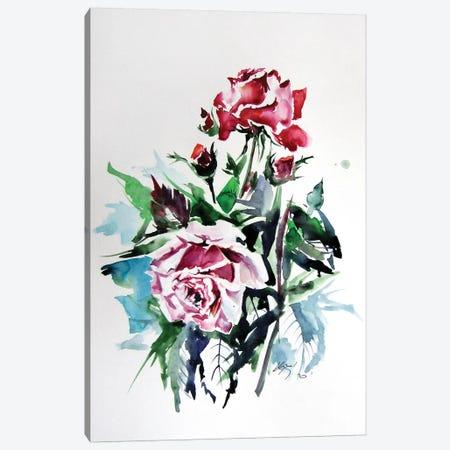 Roses Canvas Print #AKV133} by Anna Brigitta Kovacs Canvas Art