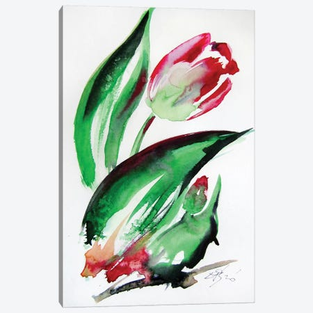 Little Tulips II Canvas Print #AKV138} by Anna Brigitta Kovacs Canvas Artwork
