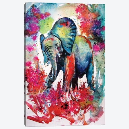 Happy Elephant II Canvas Print #AKV142} by Anna Brigitta Kovacs Canvas Print