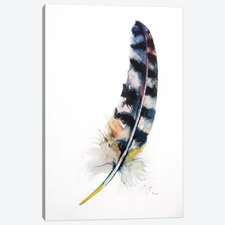 Feather Canvas Print #AKV143} by Anna Brigitta Kovacs Canvas Print