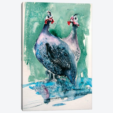 Guinea Fowl Canvas Print #AKV144} by Anna Brigitta Kovacs Canvas Wall Art