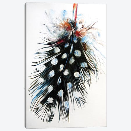 Feather II Canvas Print #AKV147} by Anna Brigitta Kovacs Canvas Art
