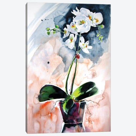 Orchidea Still Life Canvas Print #AKV150} by Anna Brigitta Kovacs Canvas Wall Art