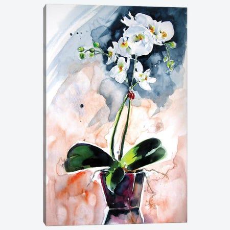 Orchidea Still Life Canvas Print #AKV150} by Anna Brigitta Kovacs Canvas Wall Art