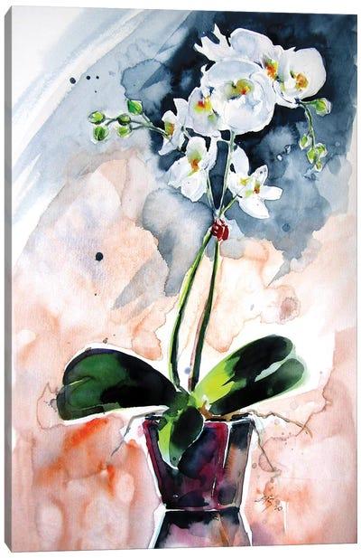 Orchidea Still Life Canvas Art Print