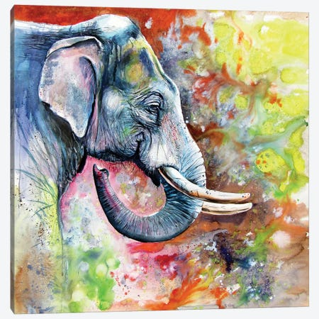 Beautiful Elephant Canvas Print #AKV155} by Anna Brigitta Kovacs Art Print