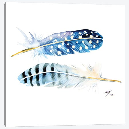 Feathers Canvas Print #AKV156} by Anna Brigitta Kovacs Canvas Print