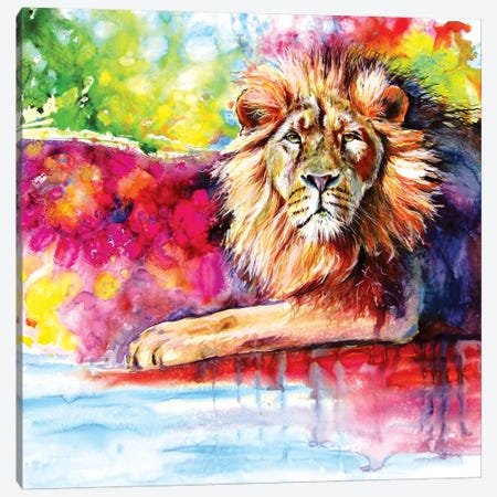 Lion Canvas Print #AKV157} by Anna Brigitta Kovacs Art Print