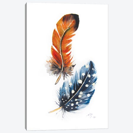 Feathers II Canvas Print #AKV161} by Anna Brigitta Kovacs Canvas Print