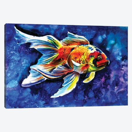 Goldfish Canvas Print #AKV171} by Anna Brigitta Kovacs Canvas Art