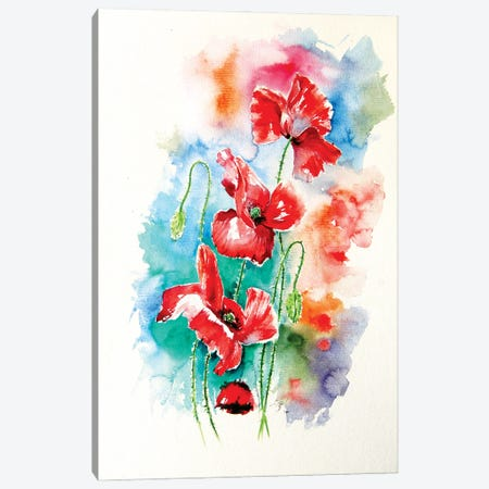 Some Poppies Canvas Print #AKV172} by Anna Brigitta Kovacs Canvas Wall Art