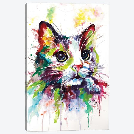 Colorful Cat Canvas Print #AKV17} by Anna Brigitta Kovacs Canvas Art