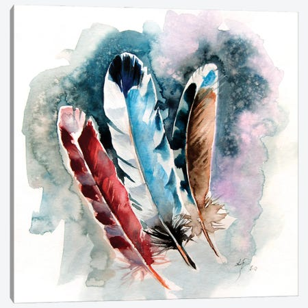 Feathers III Canvas Print #AKV184} by Anna Brigitta Kovacs Canvas Art
