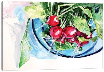 Still Life With Radish Canvas Art Print