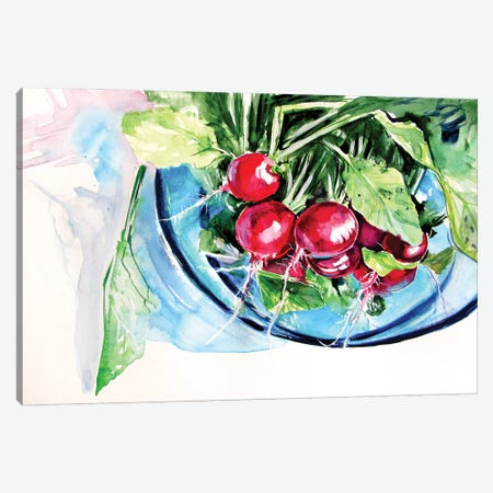Still Life With Radish Canvas Print #AKV188} by Anna Brigitta Kovacs Canvas Art Print