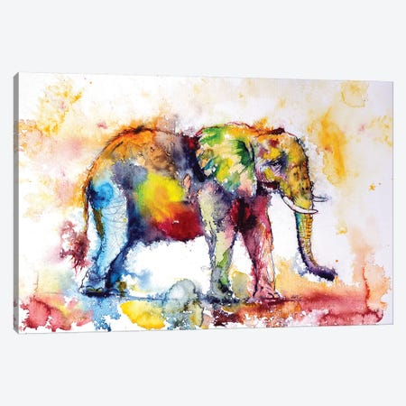 Colorful Elephant I Canvas Print #AKV18} by Anna Brigitta Kovacs Art Print