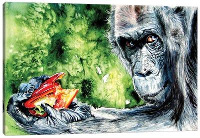 Eating Chimpanzee Canvas Art Print