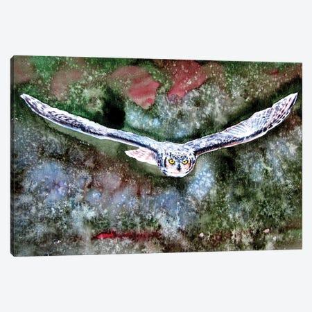 Flying Great Horned Owl Canvas Print #AKV197} by Anna Brigitta Kovacs Art Print