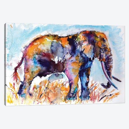 Colorful Elephant II Canvas Print #AKV19} by Anna Brigitta Kovacs Art Print