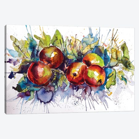 Apples II Canvas Print #AKV1} by Anna Brigitta Kovacs Canvas Artwork