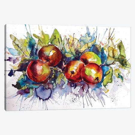 Apples II Canvas Print #AKV1} by Anna Brigitta Kovacs Canvas Artwork