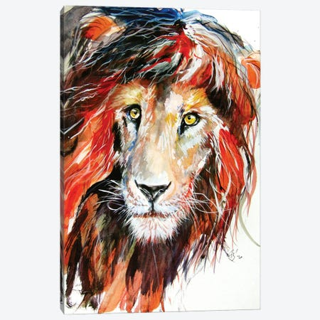 Lion Portrait Canvas Print #AKV200} by Anna Brigitta Kovacs Canvas Art