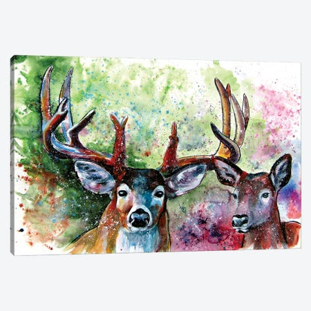 Deer Watching Canvas Print #AKV204} by Anna Brigitta Kovacs Canvas Art Print