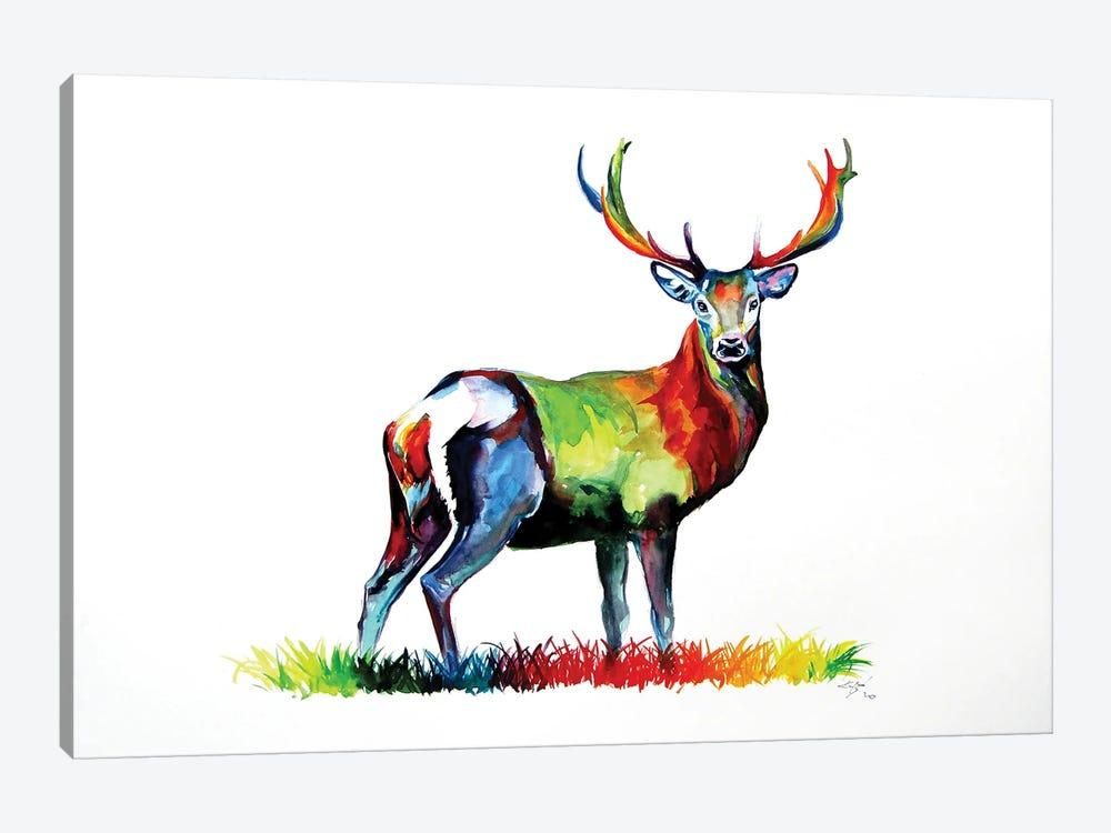 Colorful Deer by Anna Brigitta Kovacs 1-piece Canvas Artwork