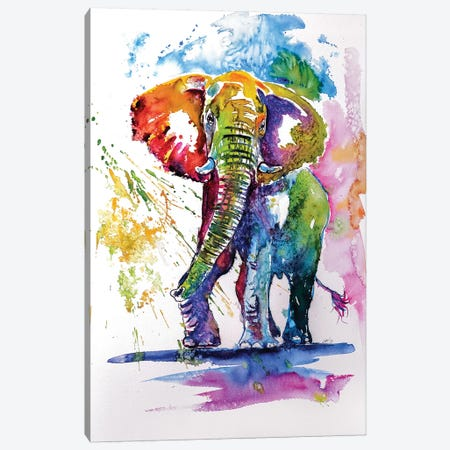 Colorful Elephant III Canvas Print #AKV20} by Anna Brigitta Kovacs Canvas Art