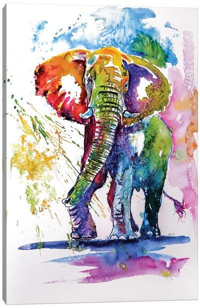 Colorful Elephant III Canvas Art Print
