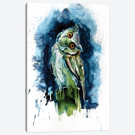Owl Watching At Night Canvas Print #AKV219} by Anna Brigitta Kovacs Art Print