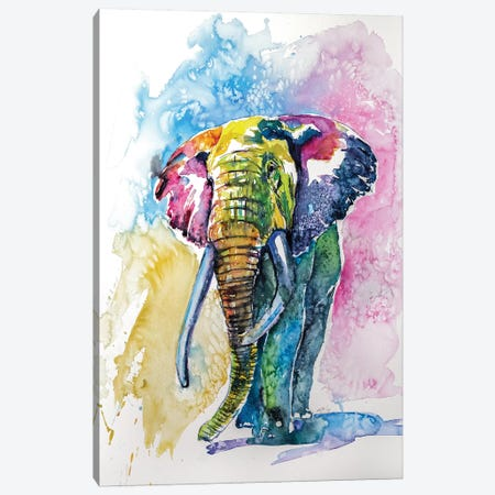 Colorful Elephant IV Canvas Print #AKV21} by Anna Brigitta Kovacs Canvas Artwork