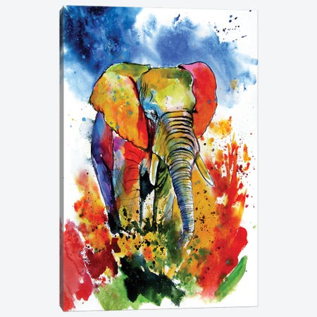 Colorful Elephant On The Field Canvas Print #AKV222} by Anna Brigitta Kovacs Canvas Art